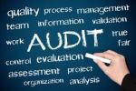 audit difinsi